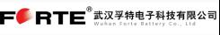 武汉孚特电子科技有限公司216.png