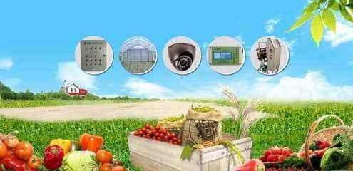 漂亮!石墨烯传感器应用在农业领域让管理愈加智能化