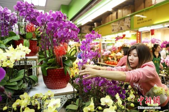 资料图:市民在花市选购鲜花。<a target='_blank' href='http://www.chinanews.com/'>中新社</a >记者 陈小愿 摄