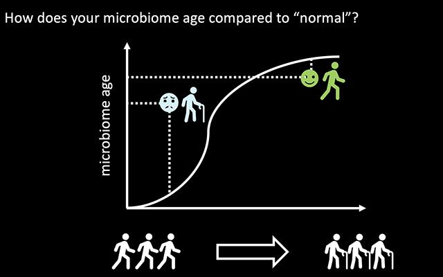IBM开发可根据肠道皮肤和口腔微生物组分预测年龄的AI