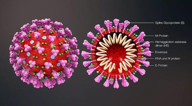 腾讯与钟南山团队共建大数据与人工智能联合实验室,以抗击疫情