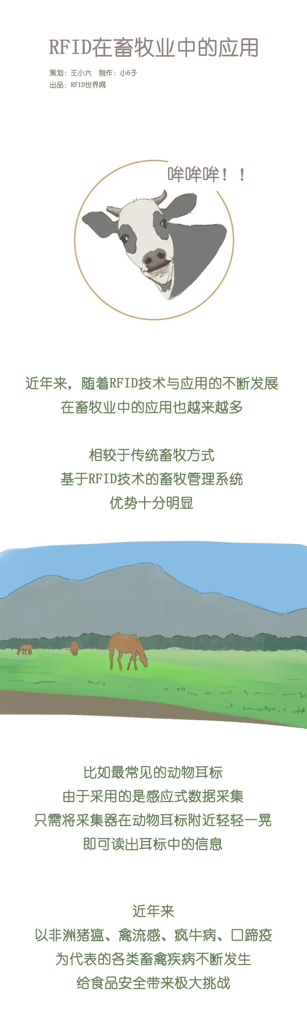 小六漫画 | RFID在畜牧业中的应用